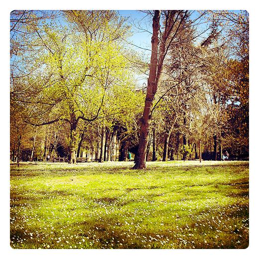 Torrelavega - parque