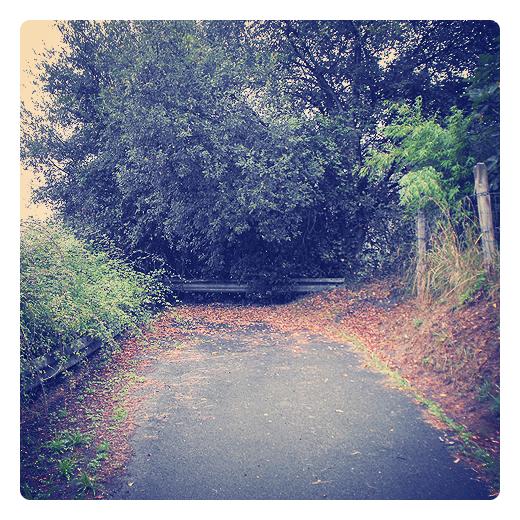 Torrelavega - carretera cortada