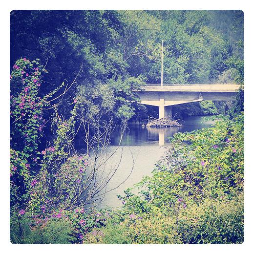 Torrelavega - puente de los italianos