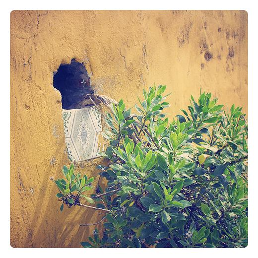 Torrelavega - jardineria artesanal