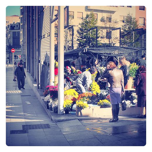 Torrelavega - flores para los difuntos
