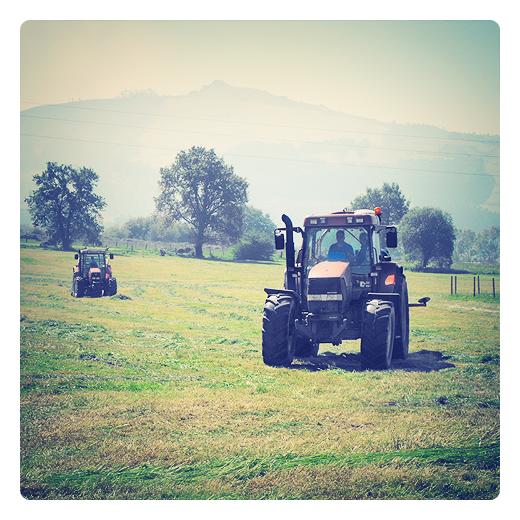 Torrelavega - granjeros