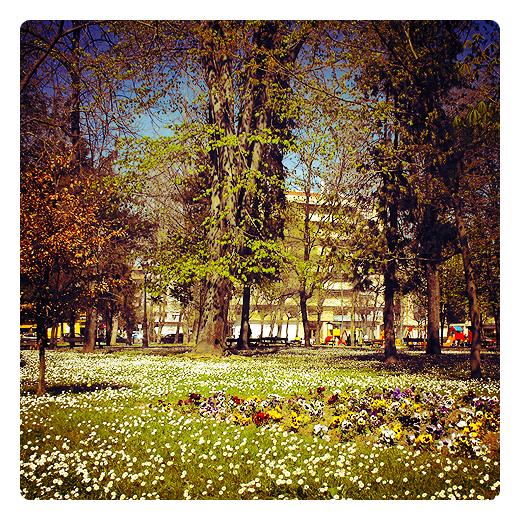 Torrelavega - primavera