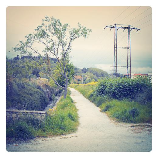 Camino vecinal, junto a un arroyo entre prados verdes, al fondo el Barrio Covadonga en Torrelavega