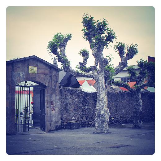 Torrelavega - camposanto