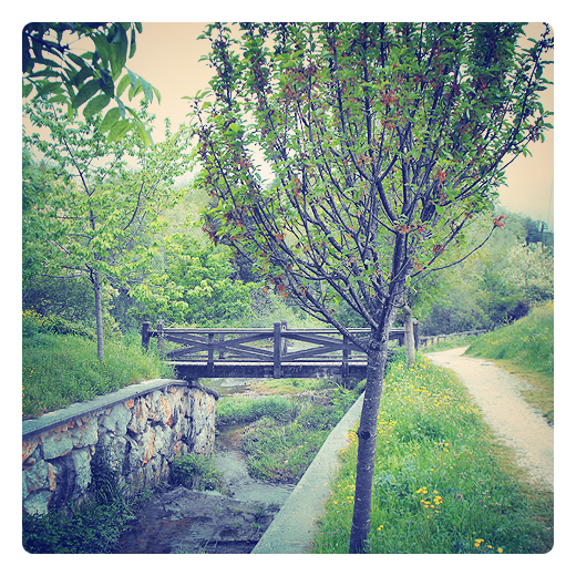 Torrelavega - puente de madera