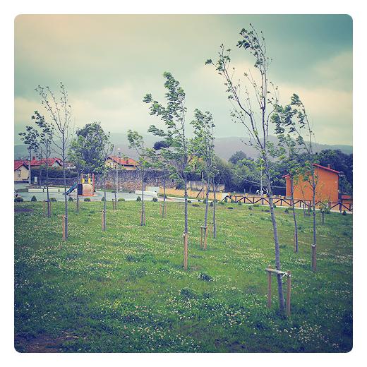 viento en los arboles, dia de viento en Torrelavega