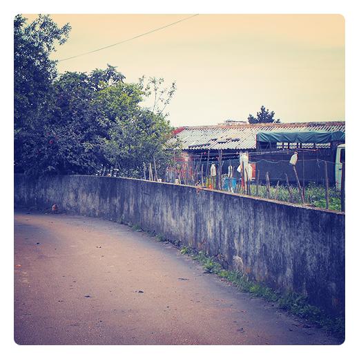 espantapajaros, botella plastico, agricultura, huerta en Torrelavega