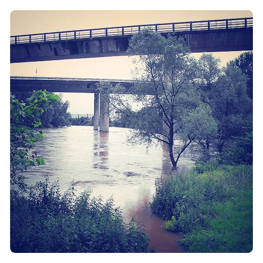 rio crecido, primavera lluviosa, el rio Besaya a su paso por Torrelavega