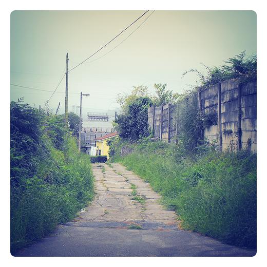 grietas camino, entre hierba y maleza, casas, vallado placas hormigon, gris, verde, dia nublado en Torrelavega