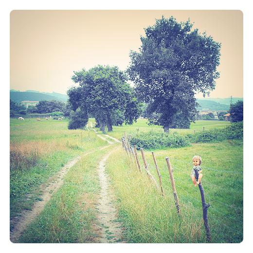 objeto perdido, borde camino, juguete, muñeco, valla, arboles, prado verde, naturaleza en Torrelavega
