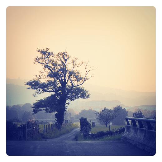 paisaje con bruma, niebla, neblina, atardecer, naturaleza, montañas en el horizonte, arboles, poesia visual en Torrelavega