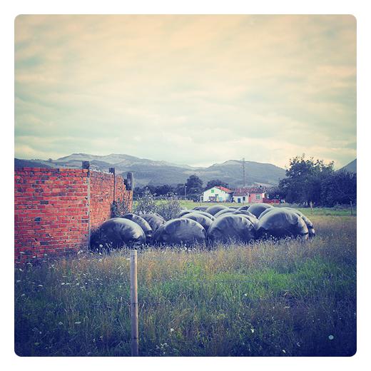 enladrillado, cielo, panderete muro, prado con casas, silos bolsa, color ladrillo, horizonte de montañas, paisaje en Torrelavega