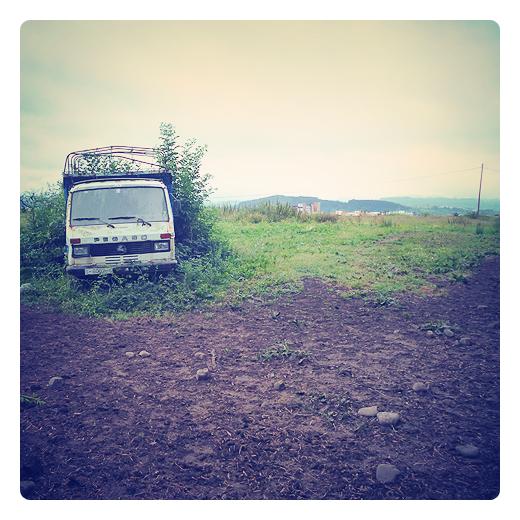 invasion vegetal, ocupacion, conquista, conjunto de plantas, humus, suelo fertil, abandono, soledad, chatarra, recursos naturales en Torrelavega