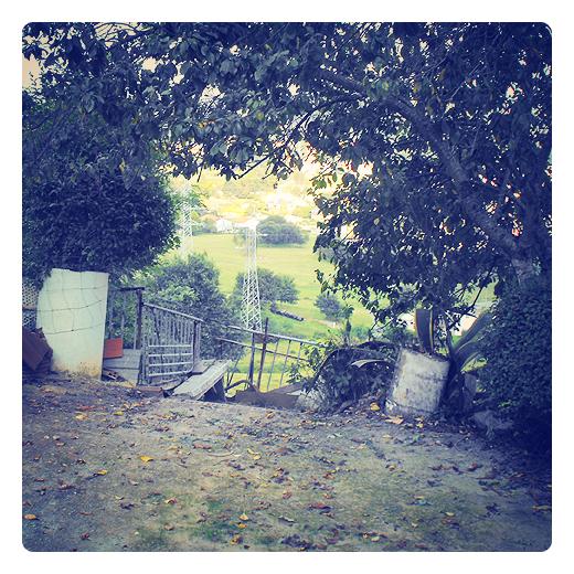 marco vegetal, tunel arboles, hueco, abertura, arbustos, residuos urbanos, reutilizacion, periferia, Ganzo, primeras hojas caidas en Torrelavega