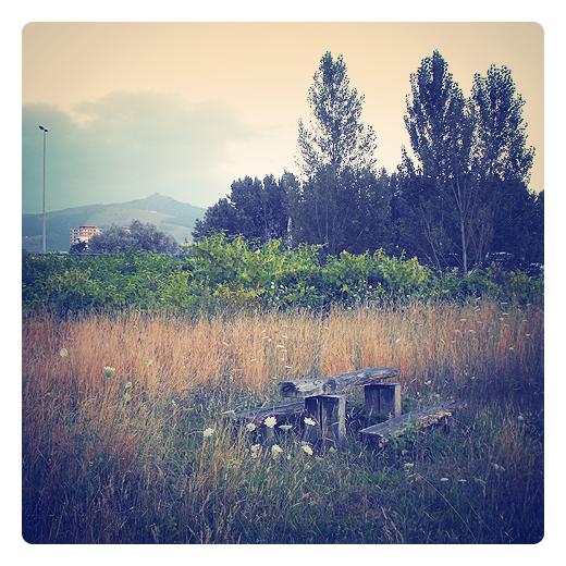 parque abandonado, desatencion, olvido, desuso, invasion vegetal, extrarradio, Ganzo, periferia de Torrelavega