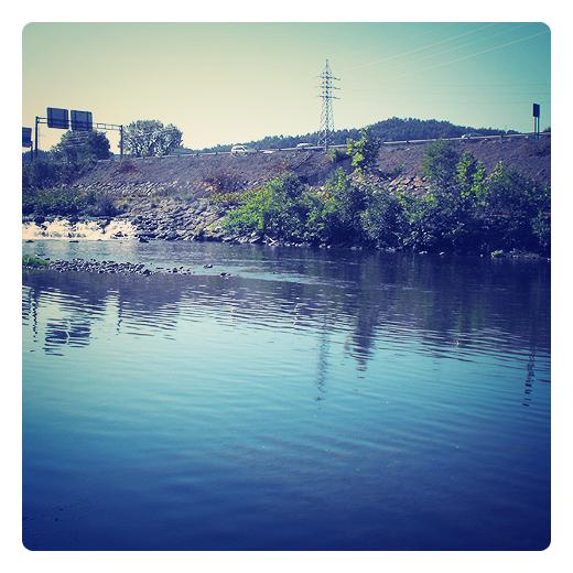 curso bajo, partes de un rio, hidrologia, curso fluvial, tramo, cauce ancho, hacia la desembocadura, confluencia Saja-Besaya, geografia fisica en Torrelavega