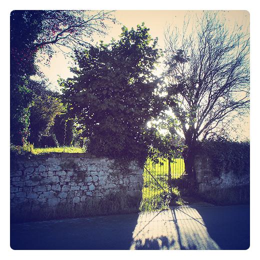 verja antigua, hierro fundido, proteccion, entrada finca, camino de entrada, muro de piedra, arboles, contraluz, sombra proyectada, antiguos materiales de contruccion en Torrelavega