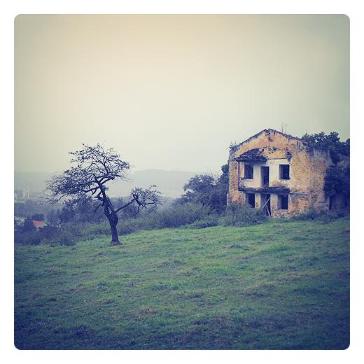 casa con árbol, casa en ruinas, arbol seco, prado verde, paisaje, bruma de montaña, horizonte con niebla, dia lluvioso, el paso del tiempo, poesia visual en Torrelavega