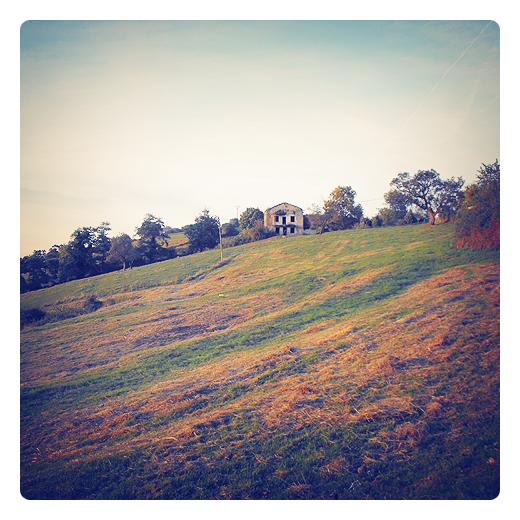 La otoñada, otoña, otoño, prado de siega, forraje, hierba seca, paisaje de arboles, horizonte, caso de piedra, cirros, atardecer, resol, agricultura y ganaderia en Torrelavega