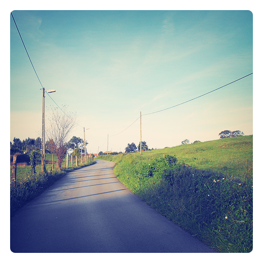 postes de la luz, postes luz hormigon, tendido electrico, red electrica, carretera comarcal, postes alambrada, horizonte de arboles, prado verde, energia electrica en Torrelavega