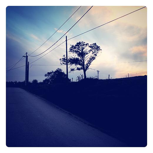 siluetas, perfil, contorno, forma del objeto, representacion, sombra, contraluz, atardecer, red electrica, carretera local, postes de luz, arbol, Las Traidas, periferia de Torrelavega