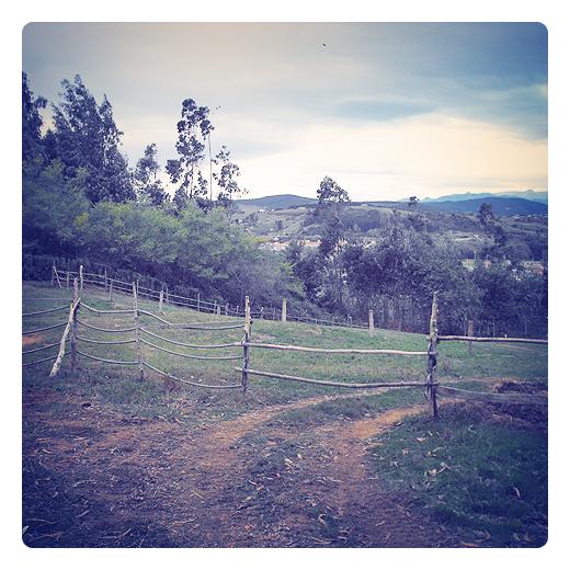 valla de palos, ramas de madera, valla de madera, campo cercado, paisaje de arboles y montañas, horizonte de montañas, pendiente de terreno, agricultura y ganaderia en Torrelavega