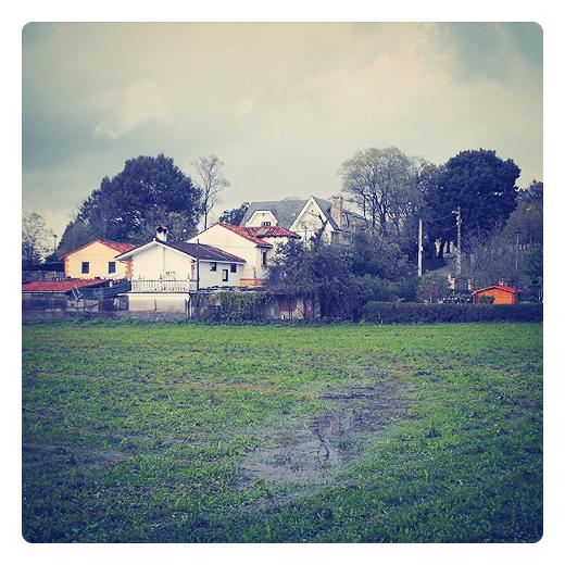 estiercol, fertilizante, abono orgánico, prado abonado con estiercol, marca de agua, grupo de casas, arboles, dia nublado, otoño, agricultura en Torrelavega