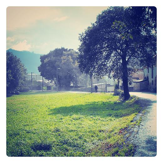 hombre solitario, silueta humana, paseo, prado con arboles, horizonte, carretara comarcal, red electrica, sol de otoño, paseando por Torrelavega