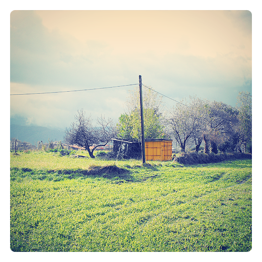 linde parcela, frontera natural, campo cercado, linea de arboles, monticulos de tierra, paisaje de arboles, horizonte, prado verde, huerta, casetas en Torrelavega
