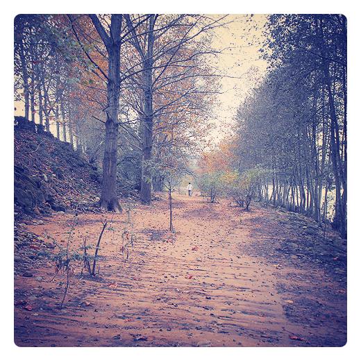 paseo junto al rio, ribera del rio, camino de tierra, paisaje de arboles, bosque, hojas caidas, brotes, otoño, silueta humana, hombre solitario, corredor verde en Torrelavega