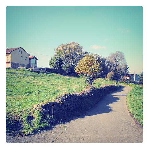 cielo despejado, buen tiempo, sol de otoño, cielo azul, paisaje de arboles, carretera local, muro de piedra, Tanos, el otoño en Torrelavega