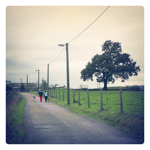paseando al perro, paseo con el perro, siluetas humanas, carretera comarcal, grietas en el suelo, prado verde, paisaje con arbol, red electrica, Barrio Caserios en Torrelavega