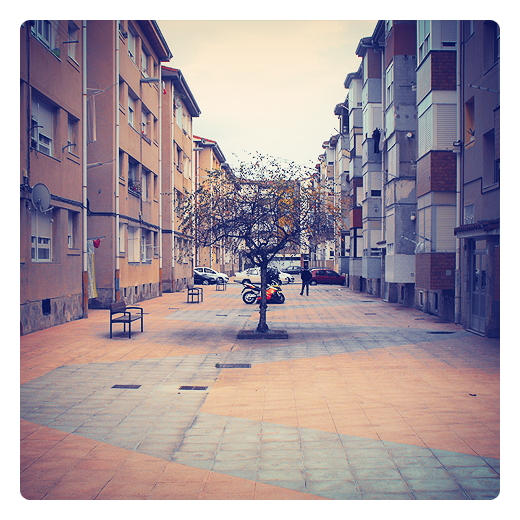 arbol urbano, ajardinamiento urbana, bloques de viviendas, calle peatonal, árbol solitario, bancos, Barrio Covadonga, fotografia de Torrelavega