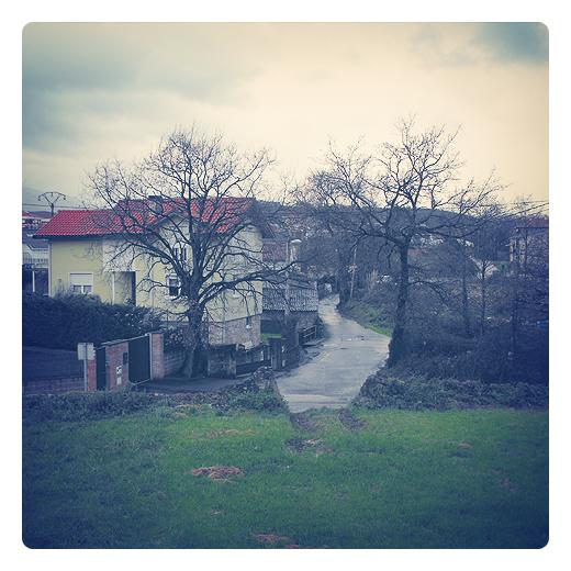 camino entre arboles, paisaje de arboles y casas, camino sinuoso, dia lluvioso, suelo mojado, carretera local, fotografia de Torrelavega