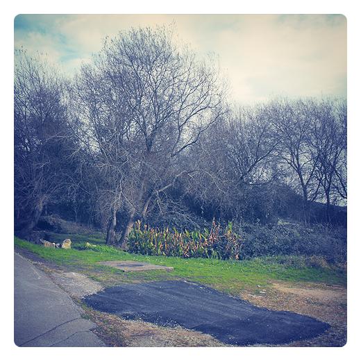 plaza de aparcamiento, parche de asfalto, carretera local, obras publicas, infraestructuras de transporte, chapuza, arboles sin hojas, plantación, fotografia de Torrelavega