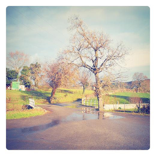 sol de brujas, sol tras la lluvia, luz solar, dia de lluvia, reflejos agua, paisaje de arboles, carretera comarcal, puente, Tanos, fotografia de Torrelavega