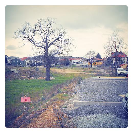 espacio tiempo, dispersion urbana, fin zona urbana, periferia, extrarradio, suburbio, paisaje de arboles y casas, El Valle, Torrelavega