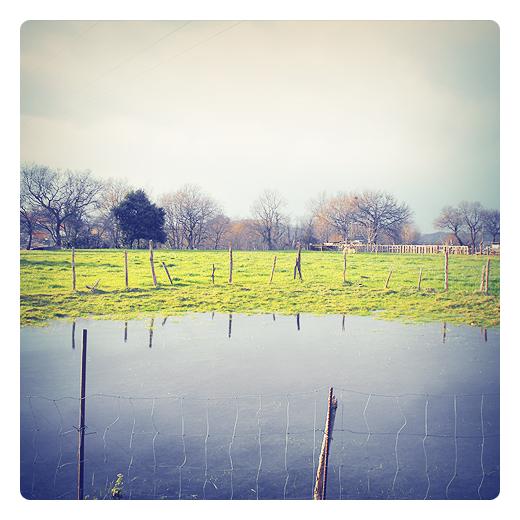 terreno inundado, campo anegado, agua estancada, lluvia torrencial, reflejos agua, prado, valla de palos, paisaje de arboles, fotografía de Torrelavega