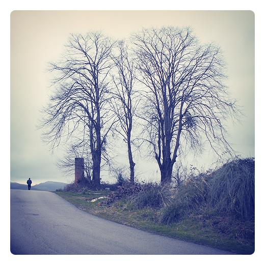 gente solitaria, hombre solitario, silueta humana, paseo, paisaje de arboles, horizonte, carretera comarcal, arboles sin hojas, invierno, fotografia de Torrelavega