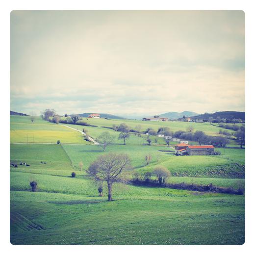 horizonte de montañas, paisaje de arboles y casas, prados verdes, camino vecinal, pendiente de terreno, punto de vista, perspectiva, Caserios, fotografia de Torrelavega