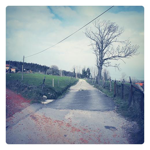 piedra roja, color rojo, finca, arbol sin hojas, red eléctrica, camino vecinal, escombro, extrarradio, periferia, fotografia de Torrelavega
