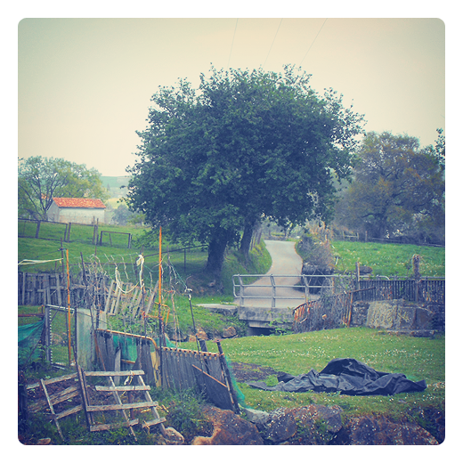 autoconstruccion, auto-construccion, reciclaje, reutilizacion, valla, camino vecinal, paisaje de arboles y casas, La Riguera, Tanos, fotografia de Torrelavega