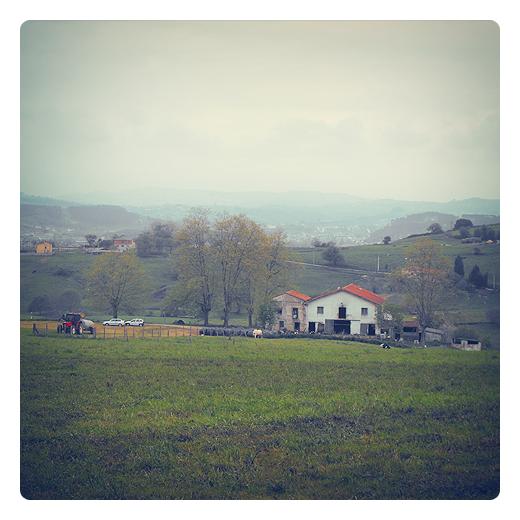 granja, explotacion, agricultura, ganaderia, paisaje de arboles y casas, horizonte de montañas. animales de granja, Caserios, fotografia de Torrelavega
