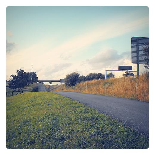carretera perdida, paisaje solitario, señalizacion vertical, carretera comarcal, hierba seca, paisaje de arboles, periferia, fotografia de Torrelavega
