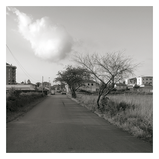 Nube, carretera local, arbol sin hojas, hierba seca, extrarradio, periferia, Mies de Vega, fotografia de Torrelavega