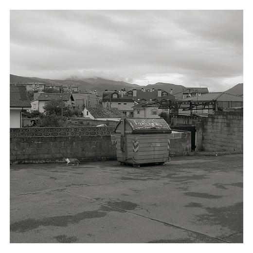 tejados y fachadas, panorama urbano, skyline, horizonte de montañas, bruma, dia nublado, gato callejero, contenedor de basura, fotografia de Torrelavega