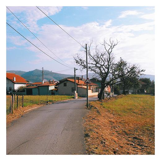 dobles parejas, lineas paralelas, red electrica, arbol sin hojas, carretera comarcal, paisaje de arboles y casas, fotografia de Torrelavega