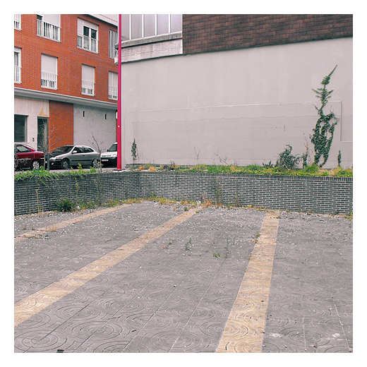 patio trasero, parte de atras, cara b, abandono, desuso, hiedra, urbanarbolismo, fotografia de Torrelavega