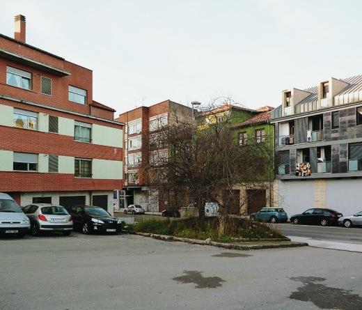 arbol solitario, urbanarbolismo, arbol sin hojas, monticulo de tierra, coches aparcados, edificios, avenida de Bilbao, fotografia de Torrelavega